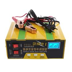 Autone 12V/24V Auto Motorcycle Battery Charger Intelligent P