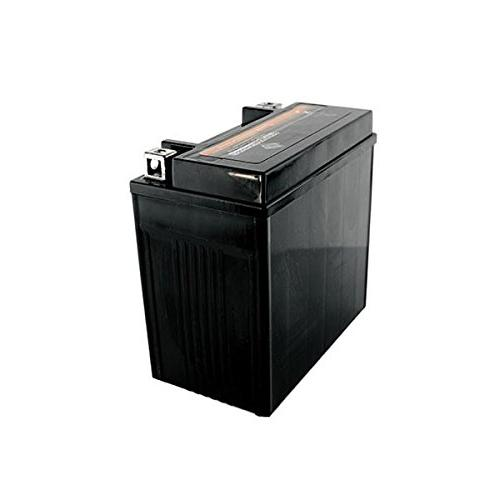 YTX14-BS High Maintenance Free AGM Battery