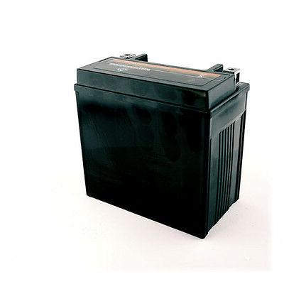 ATV Battery for Honda 450 Foreman